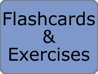 French Flashcards and Exercises